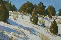 Junipers and Snow 12x16